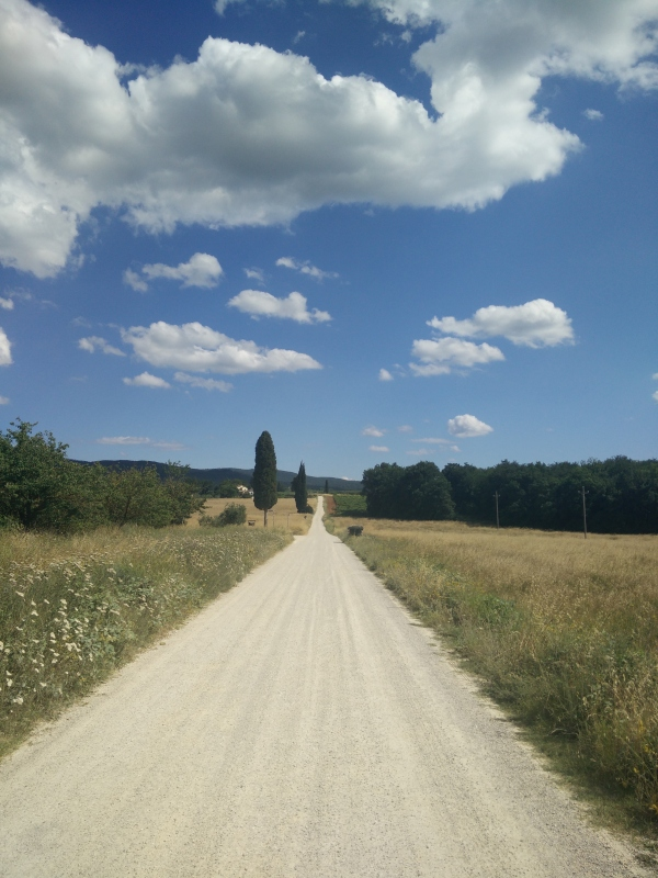 Strade bianche in Tuscany